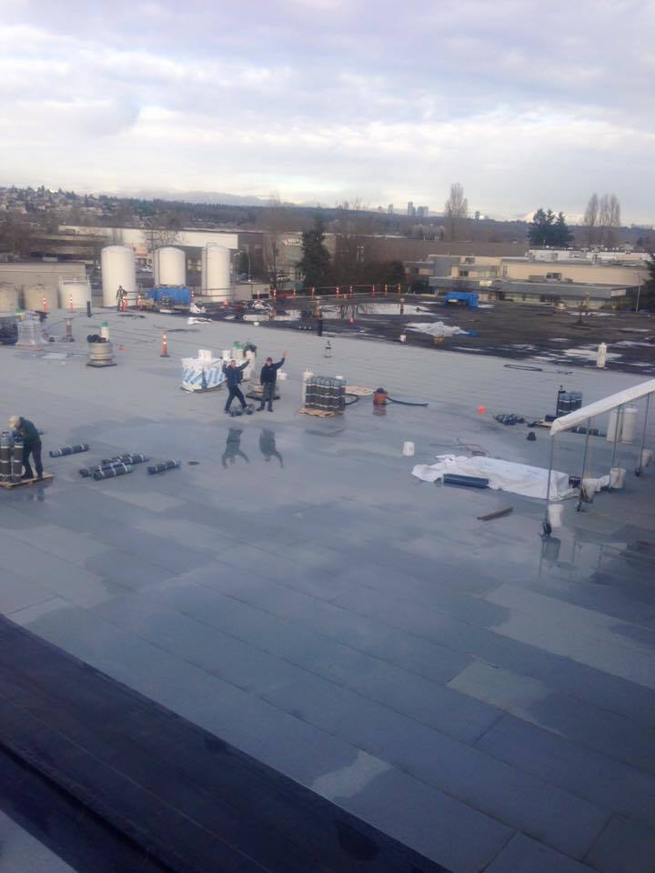 commercial-roof-types